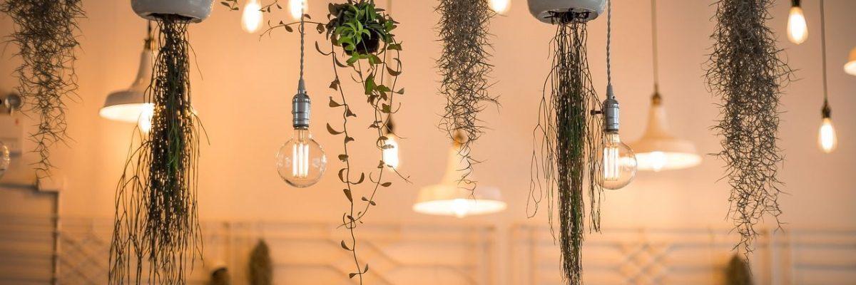 architecte interieur grenoble luminaire et plantes suspendues